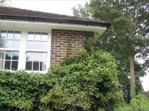 Black ogee style high capacity guttering firmly fixed to a freshly painted white fascia.