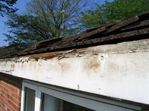 Excessive rot on this wooden fascia